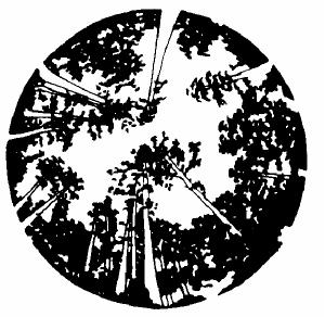sfdf-logo
